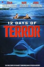 12 Days Of Terror (2004) afişi