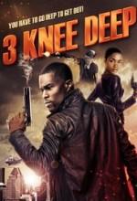 3 Knee Deep (2016) afişi