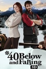 40 Below and Falling (2015) afişi