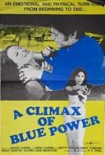 A Climax Of Blue Power (1974) afişi