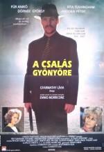 A Csalás Gyönyöre (1992) afişi