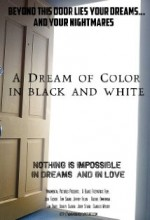 A Dream Of Color In Black And White (2005) afişi
