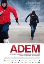 Adem (2010) afişi