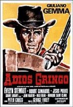 Adiós Gringo (1965) afişi