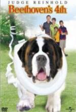 Afacan Köpek Beethoven 4 (2001) afişi