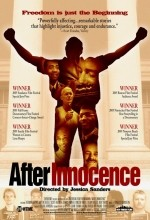 After ınnocence (2005) afişi