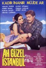 Ah Güzel İstanbul (1981) afişi