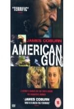 Amerikan Silahı (ı)