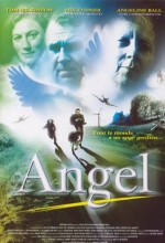 An Angel For May (2002) afişi