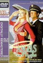Angels In Flight (1995) afişi