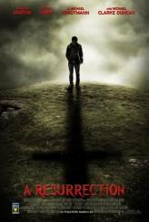 Diriliş (2013) afişi