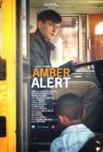 Amber Alert (2016) afişi