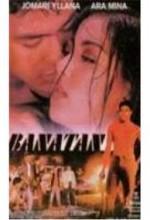 Banatan (1999) afişi