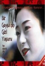 Bir Geyşa'nın Gizli Yaşamı (1999) afişi