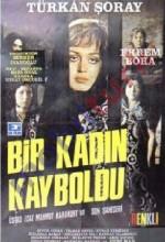 Bir Kadın Kayboldu (1971) afişi