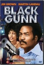 Black Gunn (1972) afişi