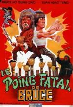 Blind Fist of Bruce (1979) afişi