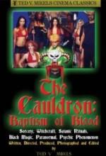 Blood Orgy Of The She-Devils II: Baptism In Blood (2004) afişi