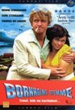 Bornholms Stemme (1999) afişi