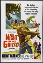 Boz Ayının Gecesi (1966) afişi