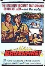 Brushfire (1962) afişi