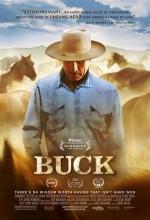 Buck (2011) afişi