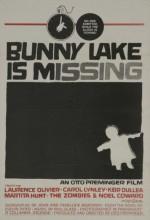 Küçük Kız Kayboldu