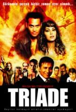 Büyük Şeytan Üçgeni (2008) afişi