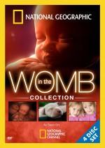Bebeklerin Gelişimi  afişi
