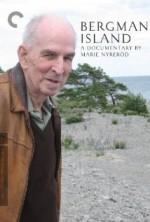 Bergman Adası  afişi