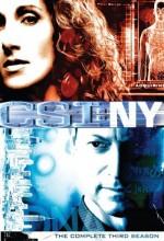 CSI: NY (2007) afişi