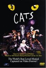 Cats (1998) afişi
