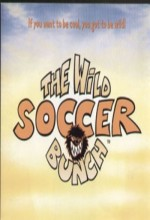 Çılgın futbol takımı 2003 afişi