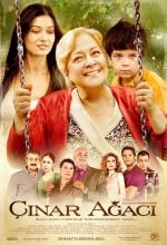 Çınar Ağacı film izle
