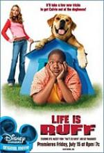 Çocuk Ve Köpek (2005) afişi