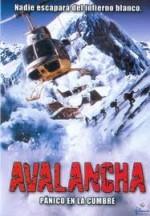 Çığ (ı) (1999) afişi