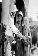 Çöl Gecesi (1929) afişi