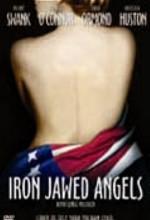 Demir Çeneli Melekler (2004) afişi