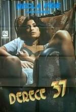 Derece Otuzyedi (1975) afişi