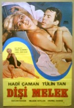 Dişi Melek (1979) afişi