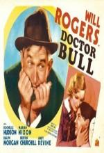 Doktor Bull (1933) afişi
