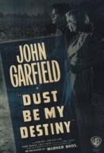 Dust Be My Destiny (1939) afişi