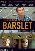 De geheimen van Barslet  (2011) afişi