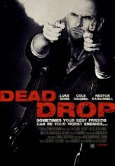 Ölümcül Hata (2012) afişi