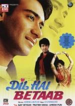 Dil Hai Betaab (1993) afişi