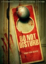 Do Not Disturb (2013) afişi