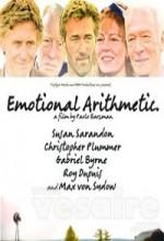 Duygusal Hesaplaşmalar (2007) afişi