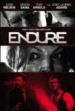 Endure (2010) afişi
