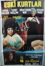 Eski Kurtlar (1974) afişi