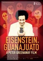 Eisenstein In Guanajuato (2015) afişi